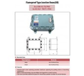 Flameproof Type Junction Boxes (IIB)