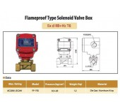 Flameproof Type Solenoid Valve Box